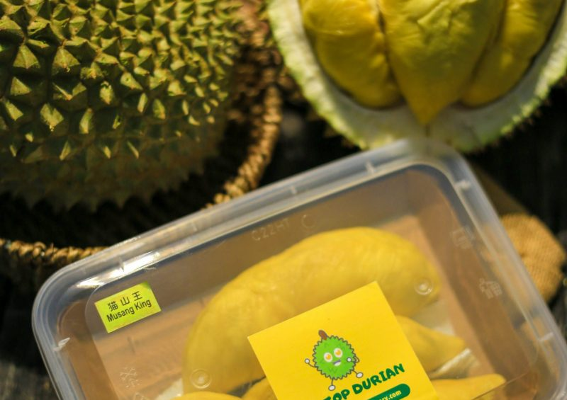 Musang King Durian | Home | Musang King | D24 | Fresh Durian | Durian Ice Cream | Durian Mochi | Durian Crepe Cake | Durian Cheesecake | Tip Top Durian Delivery | Singapore Top Fresh Durian Online Delivery