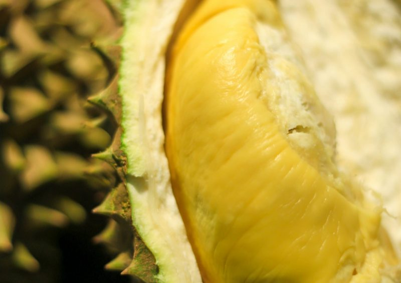 XO Durian | Musang King | D24 | Fresh Durian | Durian Ice Cream | Durian Mochi | Durian Crepe Cake | Durian Cheesecake | Tip Top Durian Delivery | Singapore Top Fresh Durian Online Delivery