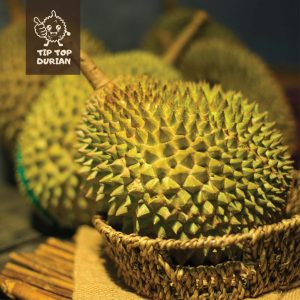 Musang King | D24 | Fresh Durian | Durian Ice Cream | Durian Mochi | Durian Crepe Cake | Durian Cheesecake | Tip Top Durian Delivery | Singapore Top Fresh Durian Online Delivery