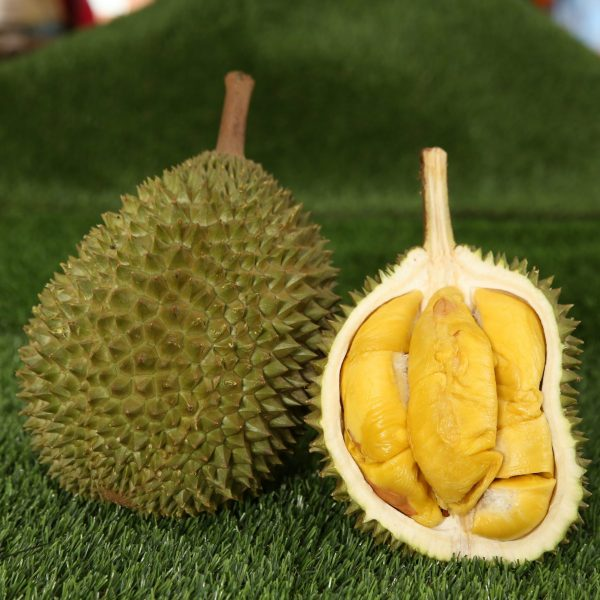 Musang King | Tip Top Durian Delivery | Singapore Top Fresh Durian Online Delivery